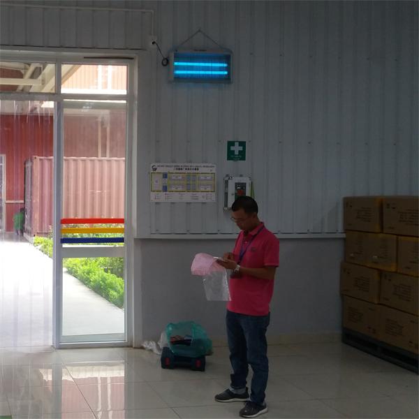 đèn diệt côn trùng kill pest hcm